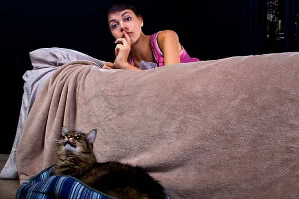How to Stop your Cat from Meowing all Night min